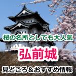 弘前城は桜の花筏や冬のライトアップが美しい!見どころ満載の必見スポット
