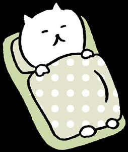毛布のサイズ