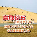 ただの砂山なんて言わせない!鳥取砂丘で自然がもたらす芸術と、体感アクティビティで遊び尽くそう!