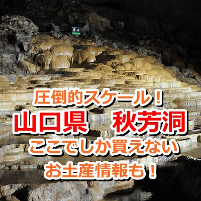 山口県 秋芳洞