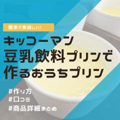 豆乳飲料プリンの作り方が簡単で美味しすぎる!キッコーマンの豆乳飲料を使うとチョコや抹茶のプリンも楽しめるよ