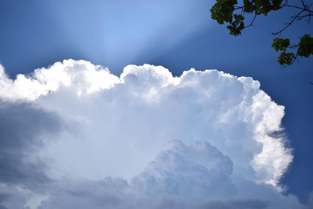 雨の沖縄イメージ