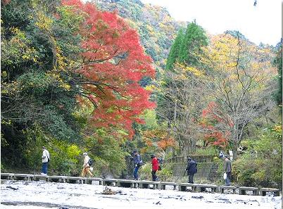 中瀬遊歩道