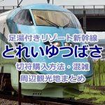 「とれいゆつばさ」の足湯は予約必須!日本初のリゾート新幹線を堪能しよう!