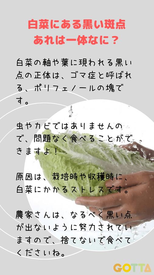 多い 点 白菜 黒い