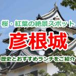紅葉や桜の名所!彦根城の歴史や周辺のおすすめランチをご紹介します