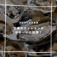フェリシモの牡蠣クッションが触り心地抜群の程よいボリューム!抱きしめるとなんだか落ち着く…?