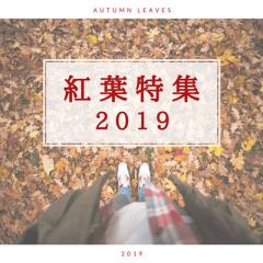 【11月】紅葉が見頃な関東・関西・東海地方などの紅葉スポット10選まとめ!