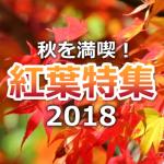 【特集】2018年、紅葉の見ごろ予想!