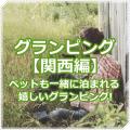 グランピング【関西編】ペットOKだから一緒に宿泊できちゃいます!