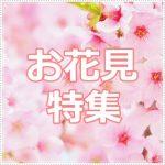 【特集】日本三大桜の名所はここ!2019年お花見の場所は決まった?
