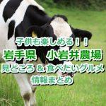 子供も楽しめる!岩手県「小岩井農場」の見どころ&絶対に食べたいグルメ情報をご紹介!