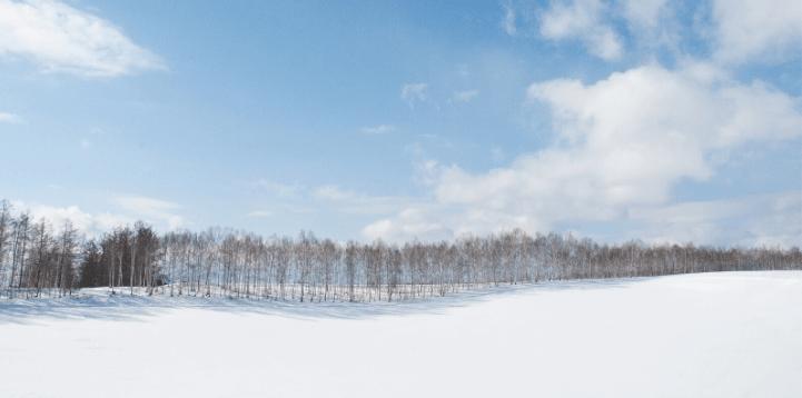 四季彩の丘 ウィンターシーズン