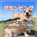 グランピング【東海】ペットも一緒に宿泊できるオススメグランピングスポット!
