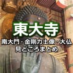 東大寺の大仏や南大門を見に行こう!歴史・大きさ・見どころまとめ